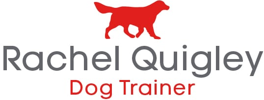 Rachel Quigley Dog Trainer